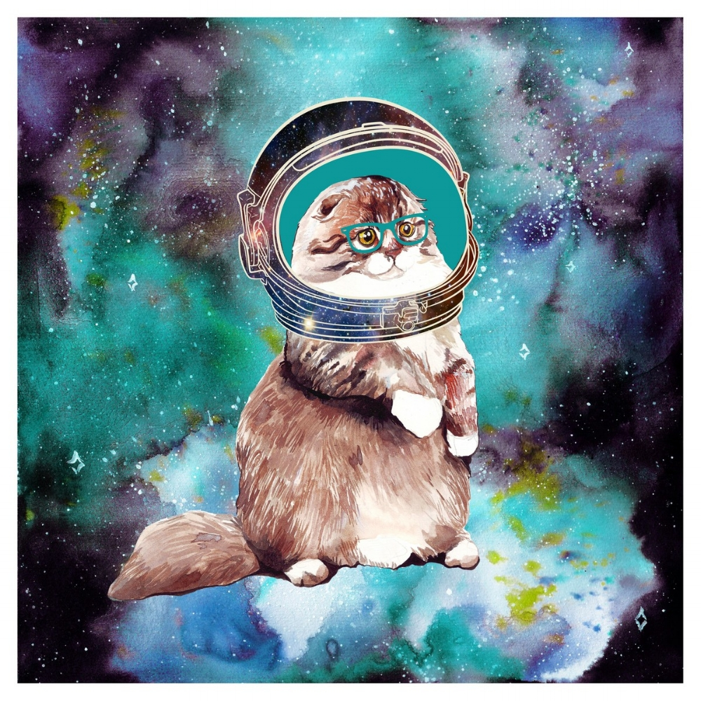 Astronaut Cat by Anca Pora