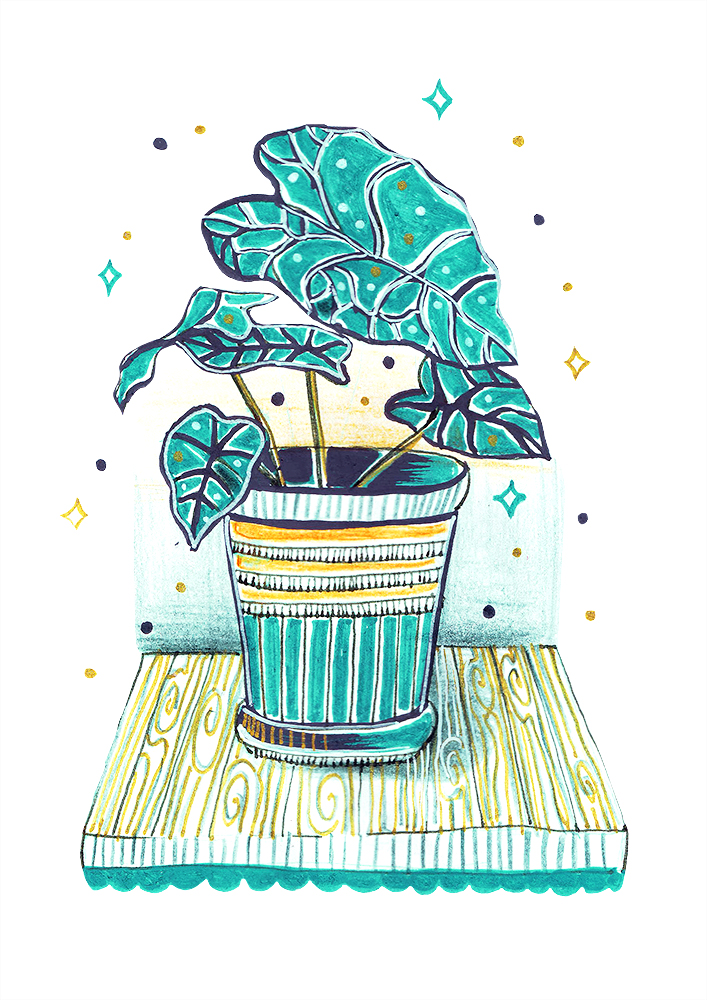 Posca plant illustration by anca pora