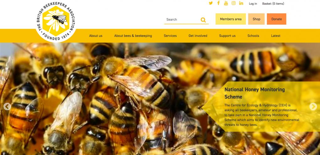 BBKA Homepage Sample.png