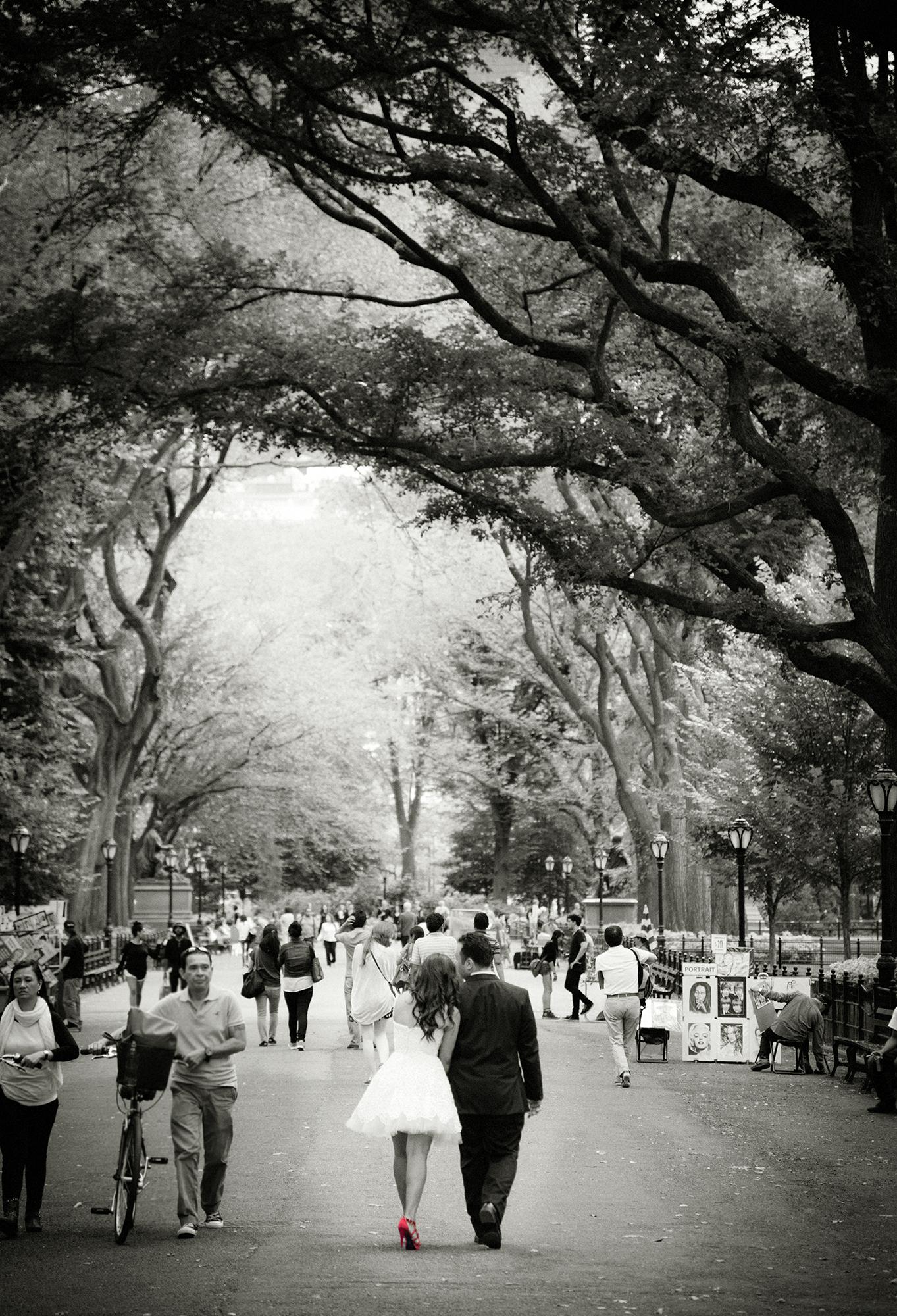 Central Park engagement portrait jamie levine photography.jpg