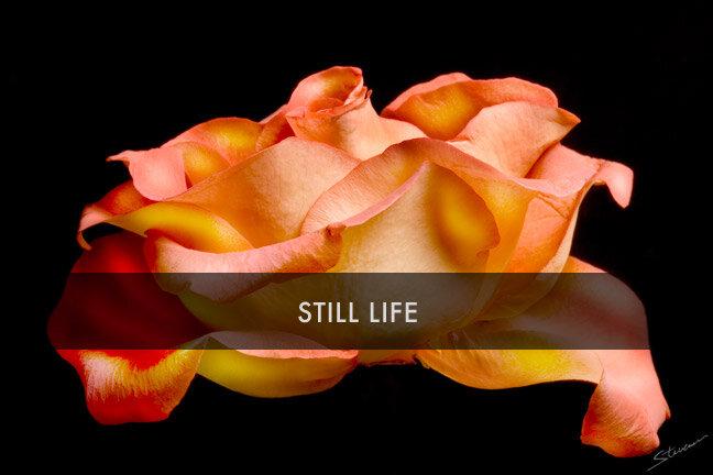 stillife.jpg