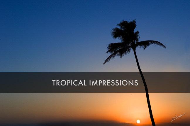 tropicalimpressions.jpg
