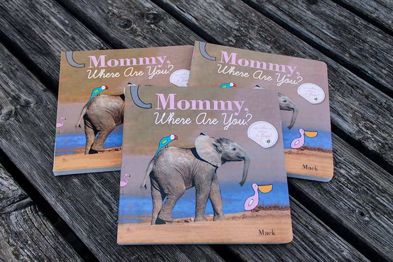 Clavis-publishing-new-york-mothers-day-books-for-toddlers-childrens-board-book-gift-celebration-9781605371306-mommy-where-are-you-mack-van-gageldonk-best-selling-author-illustrator.jpg