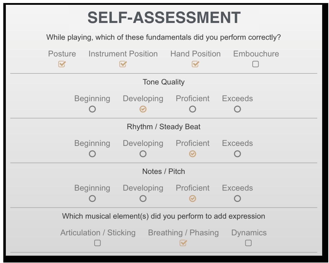 Self Assessment Box.png