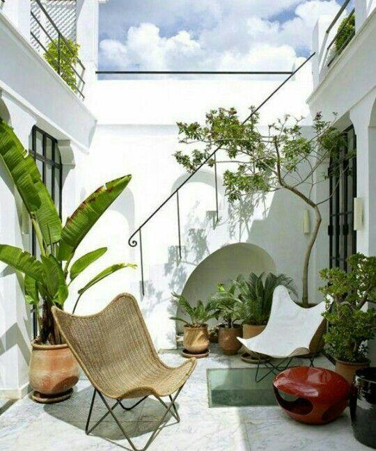 rattan-butterfly-chair.jpg