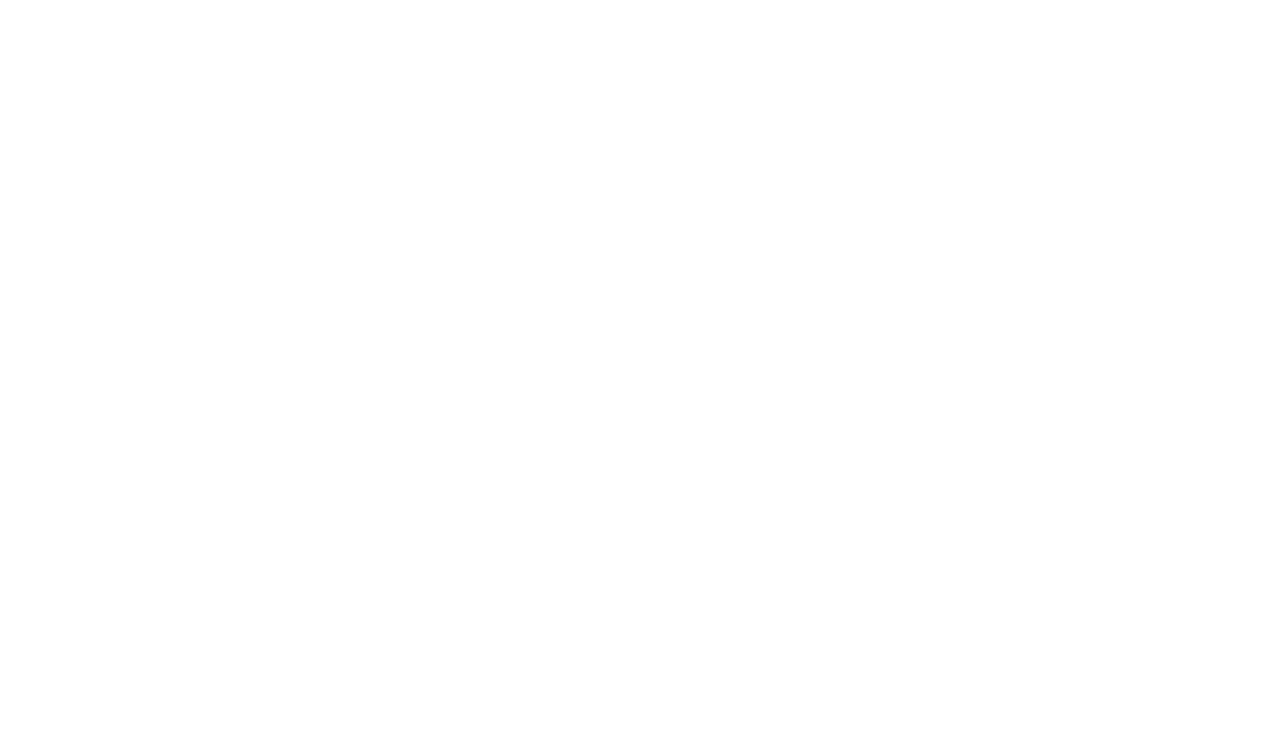 Elite Detection Logo_REV_Horz.png