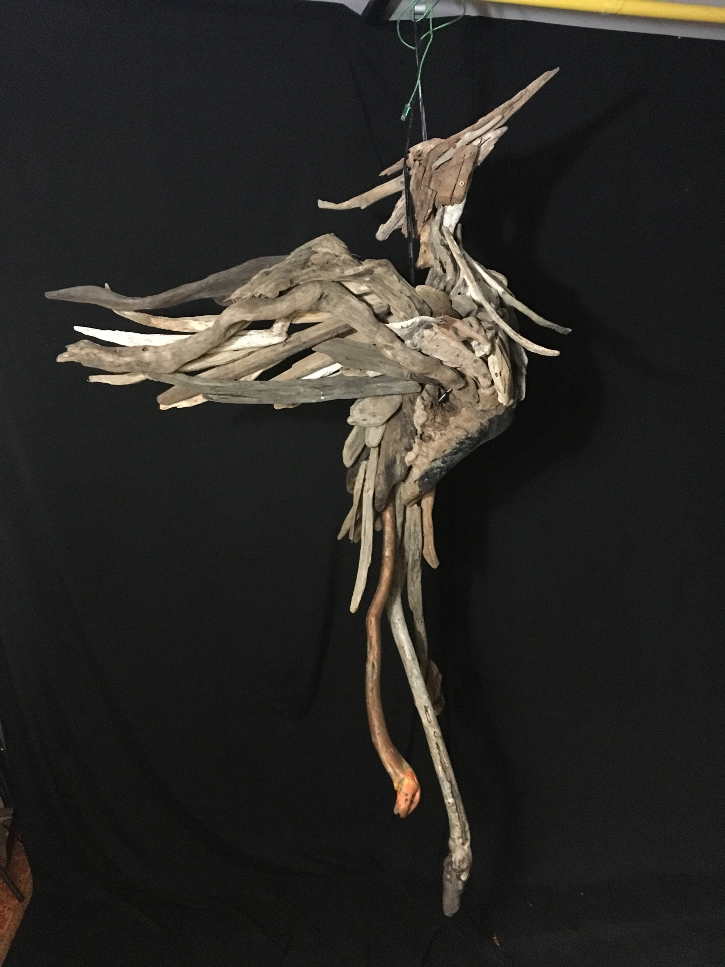 A Rising Phoenix