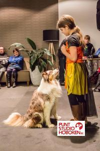 2016_01_09_doggy_show_groenzuid-5.jpg