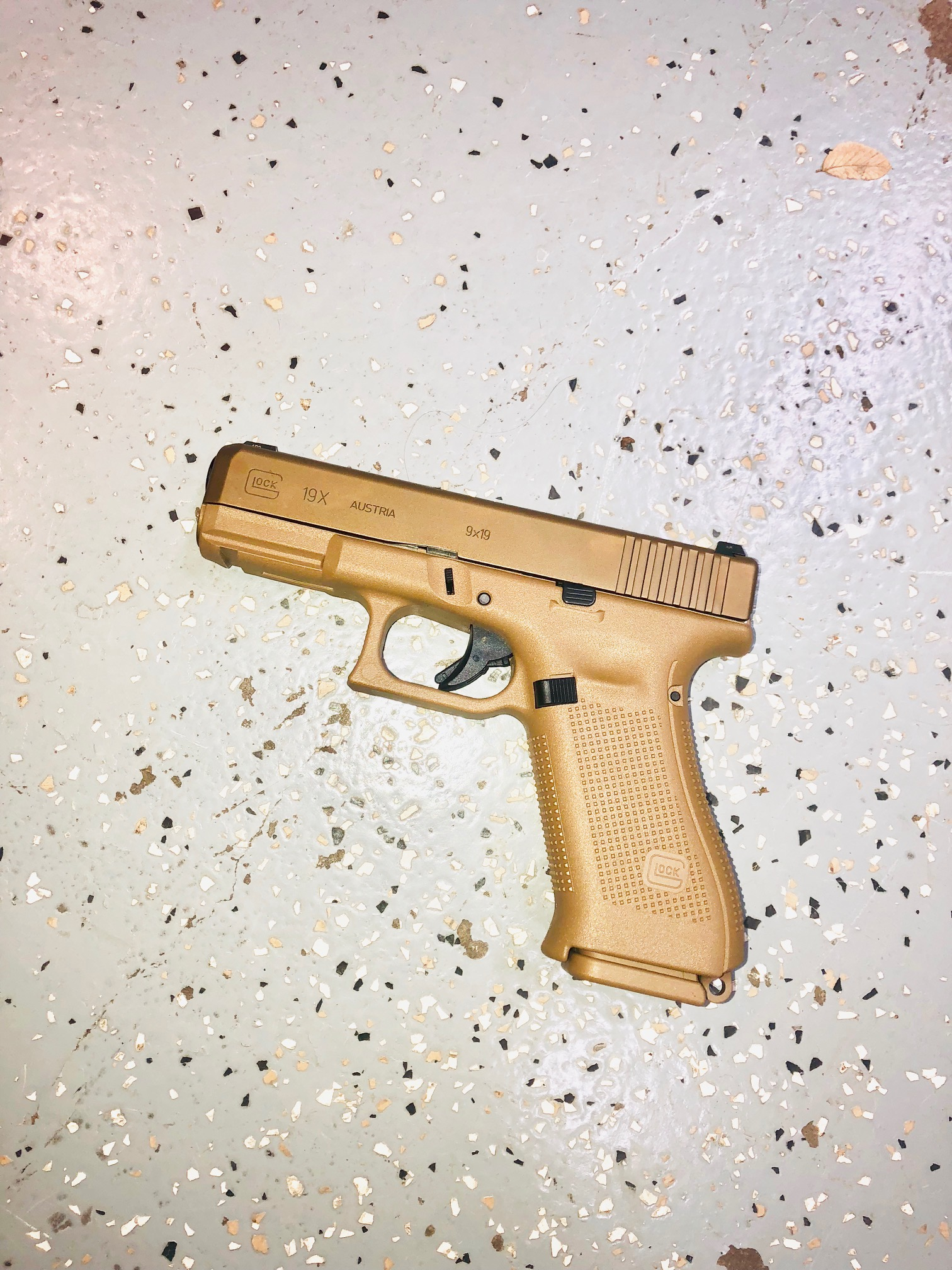 Glock19X.jpg