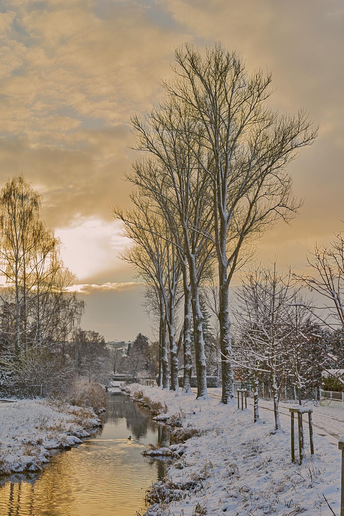 winter2016005.jpg