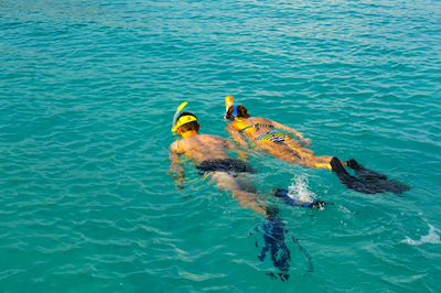 Guided SNORKELING - starts at $25
