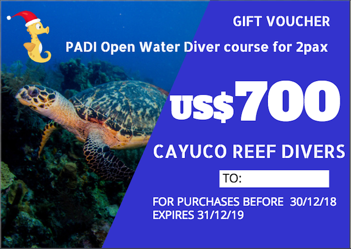 PADI Open Water Diver course    For 2 persons. Taxes included.    Para 2 personas. Impuestos incluídos.