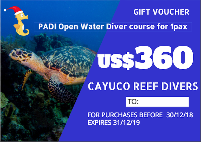 PADI Open Water Diver course    For 1 person. Taxes included.    Para 1 persona. Impuestos incluídos.