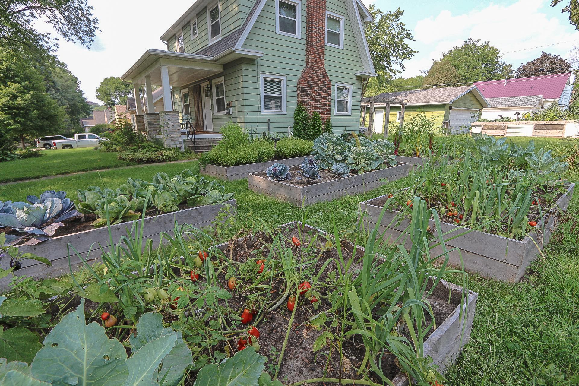 Cedar Rapids Stay N Grow
