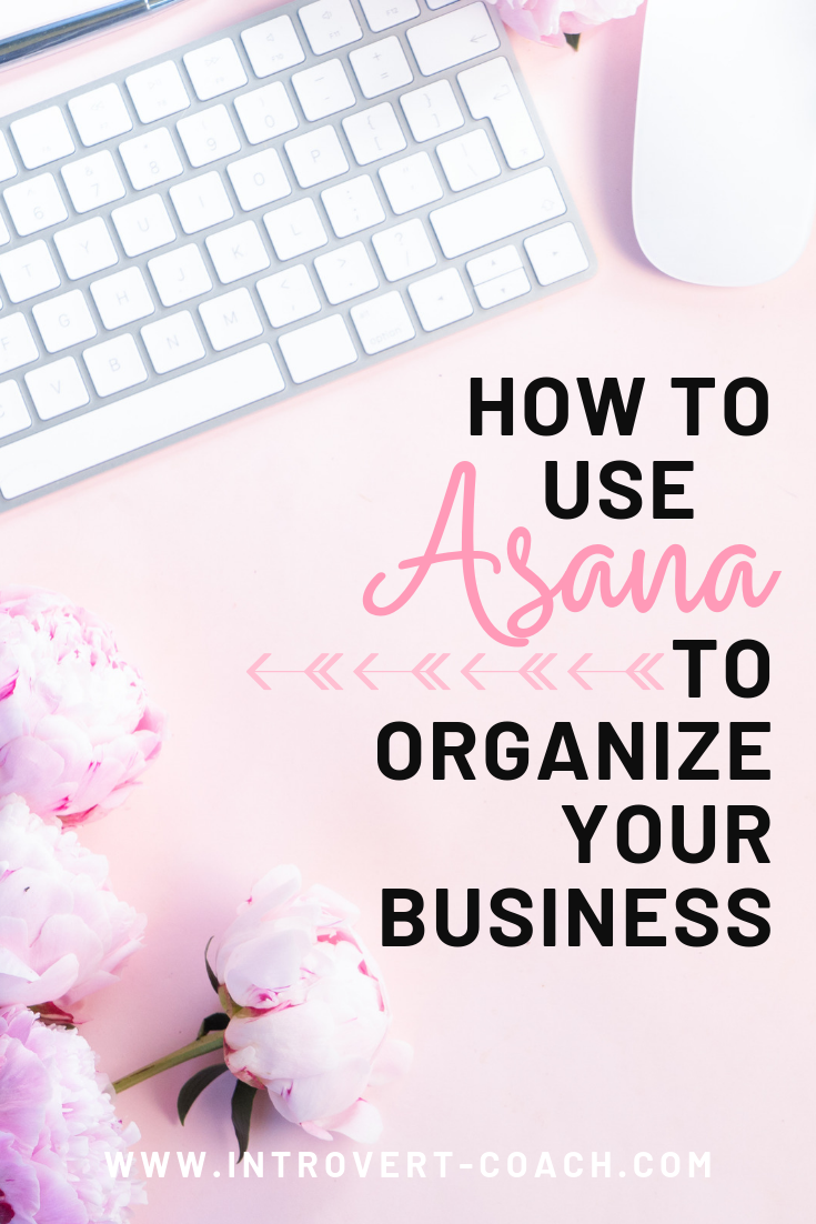 How to Use Asana to Organize Your Business