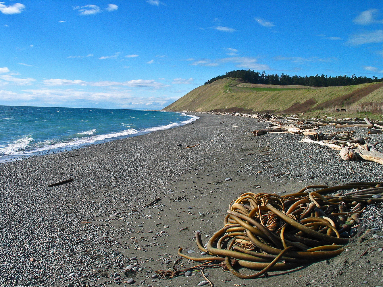 Ebey Composition
