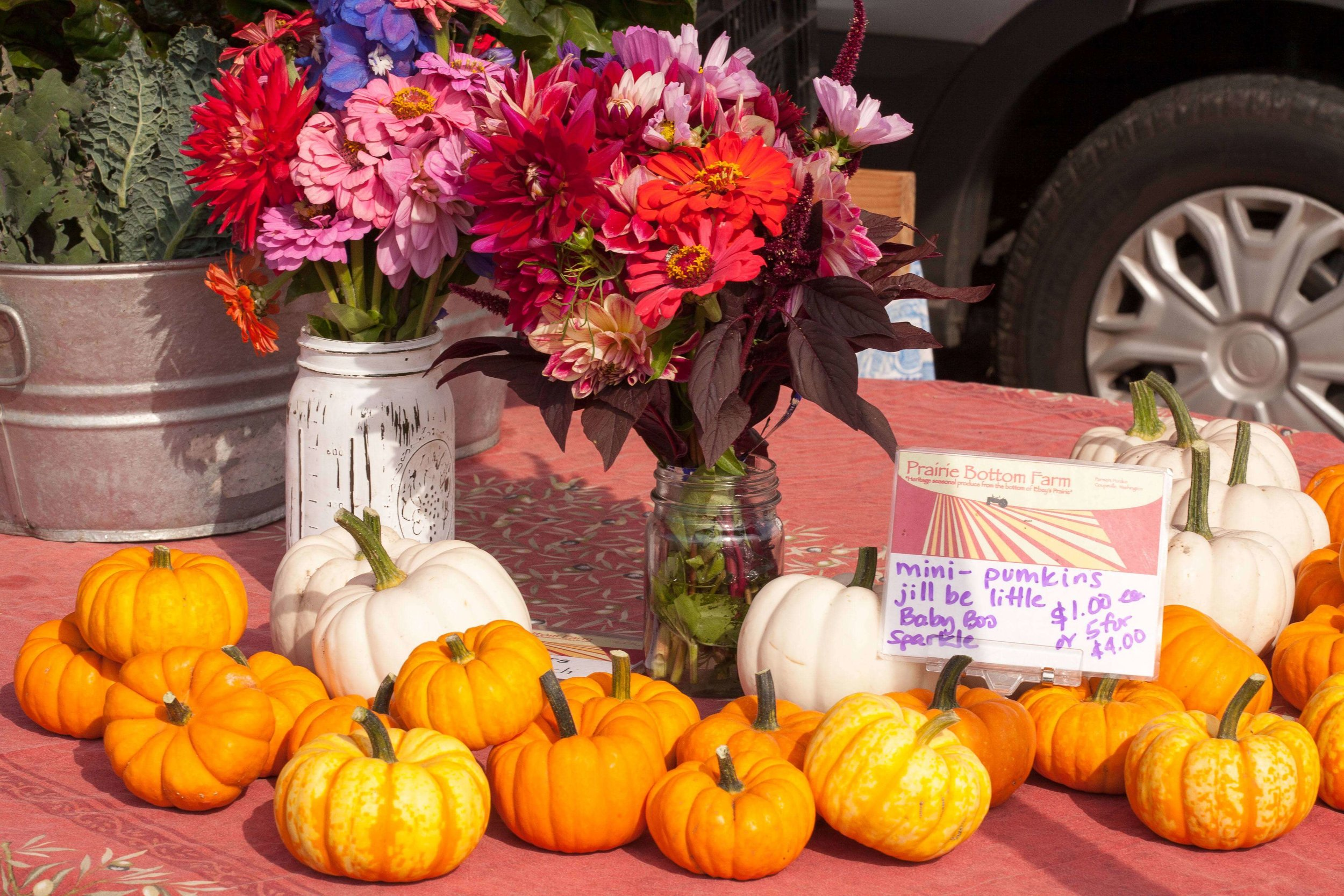 Coupeville_Market_September_2017-9 copy.jpg
