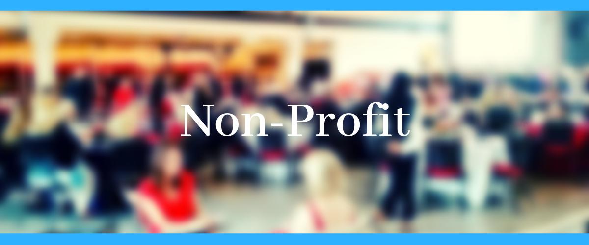 Non Profit Banner.png