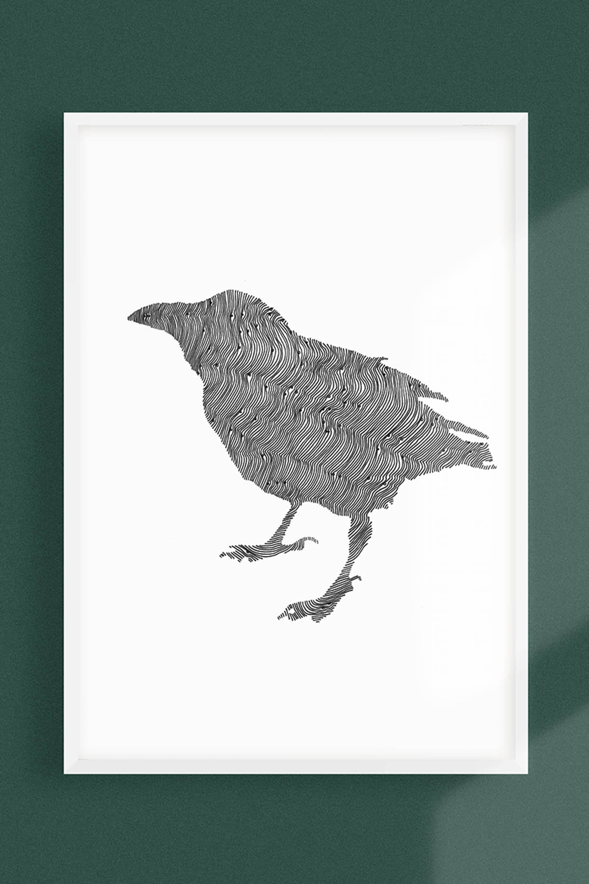 CROW ILLUSTRATION -