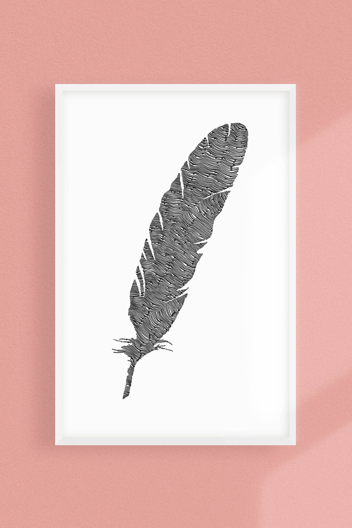 FEATHER ILLUSTRATION -