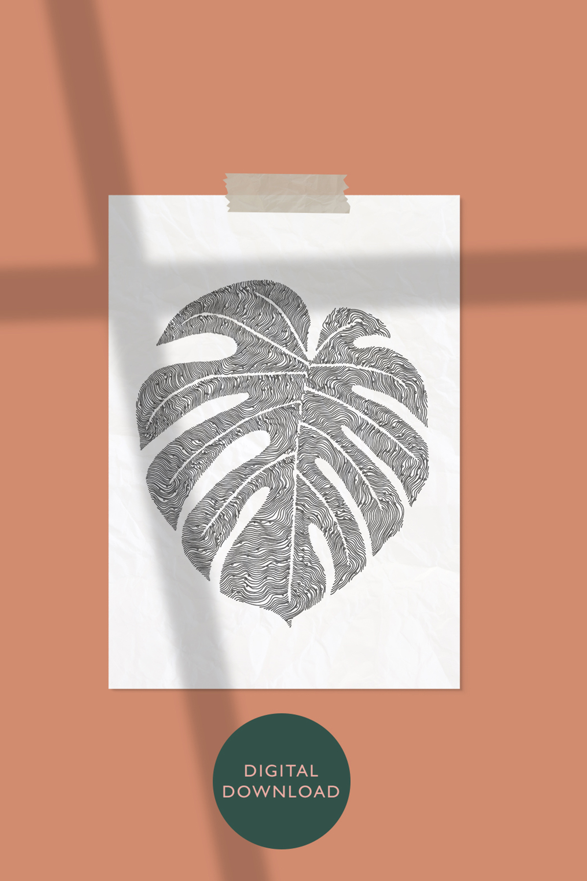 monstera deliciosa / CHEESE PLANT ILLUSTRATION -