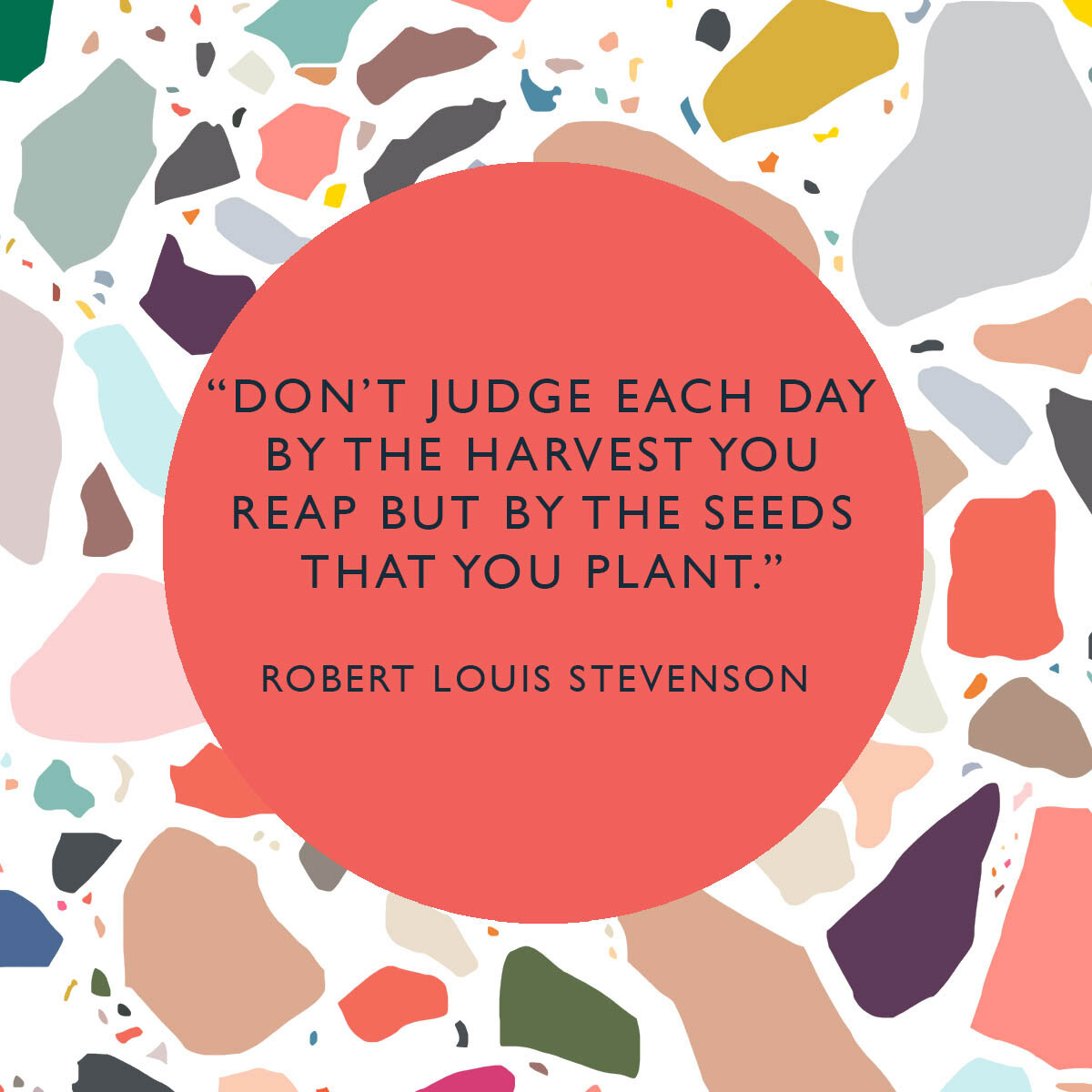 MOTIVATIONAL QUOTE SEEDS STEVENSON