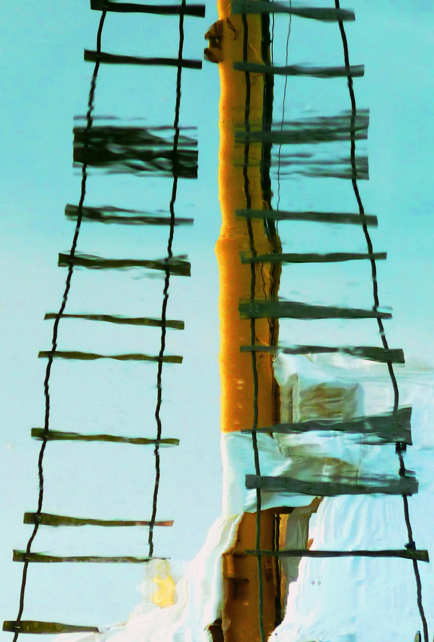 """Climbing Opens"" by Jayne Marek"