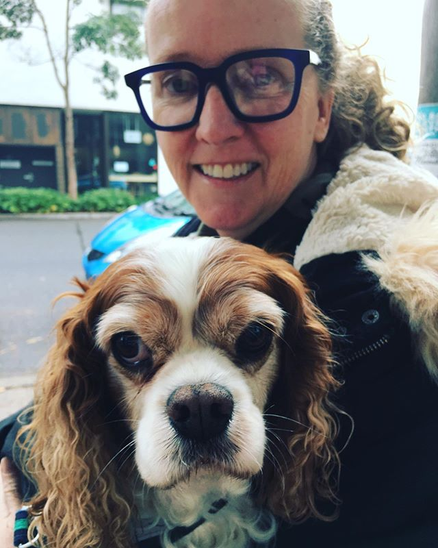 + TRISTAN LOVES // Angie. She's the best cuddler. Is there a problem?  This human gets it.  I'm not supposed to sit on the floor.  I'm a lap dog. I'm a cavalier King Charles you know So if you wouldn't mind  Remember this And to feed me more bacon. . #tristantales  Image courtesy @Sarah walker director . . . #dogsofinstagram #pooch #writersofinstagram #digitalstrategist #lovemyjob #friends #bestoftheday #cavalierkingcharlesspaniel