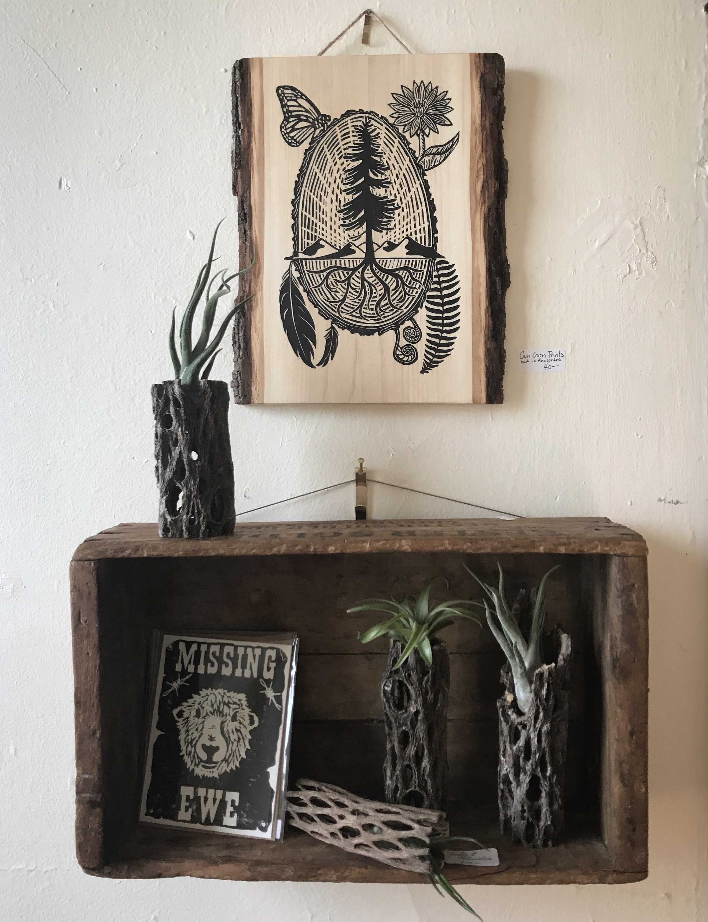 Art, plants, and more - Here at Dry Dock, we strive to bring out the best of the Sonoran Desert and Pacific Northwest. Our products are personal, small batch, and thoughtfully made.At this time all of our products are only available in our store. If there is something in particular that you must have, please reach out to us and we will try to accommodate.Our selection of plant species is constantly changing so please reach out to us to see what is in stock. We would also love to help you in your quest for an uncommon species if we do not presently carry it!