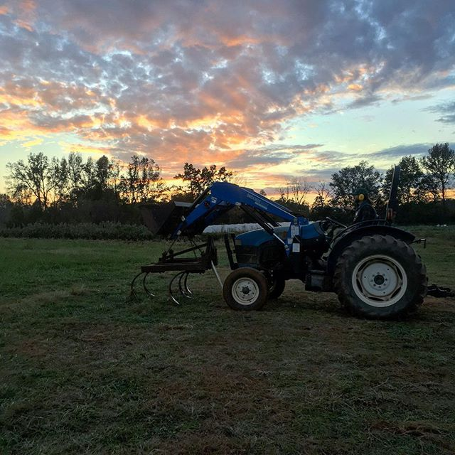 Sunsets from the new farm field are getting to be a familiar sight.. and we're not mad about it 👩🏼‍🌾🌻👨🏻‍🌾