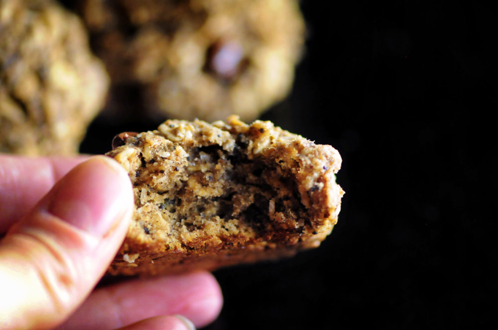 Hearty, filling, nutritious, delicious, and energizing Gluten-Free Trail Mix Cookies full of coconut, oats, almond and buckwheat flours, bananas, cacao, chocolate chips, raisins and walnuts! They make for one tasty high protein treat along the trail, or any time you need a treat that you can feel good about! #trailmixcookies #glutenfreecookies #cowboycookies #hikingfood #highproteincookies