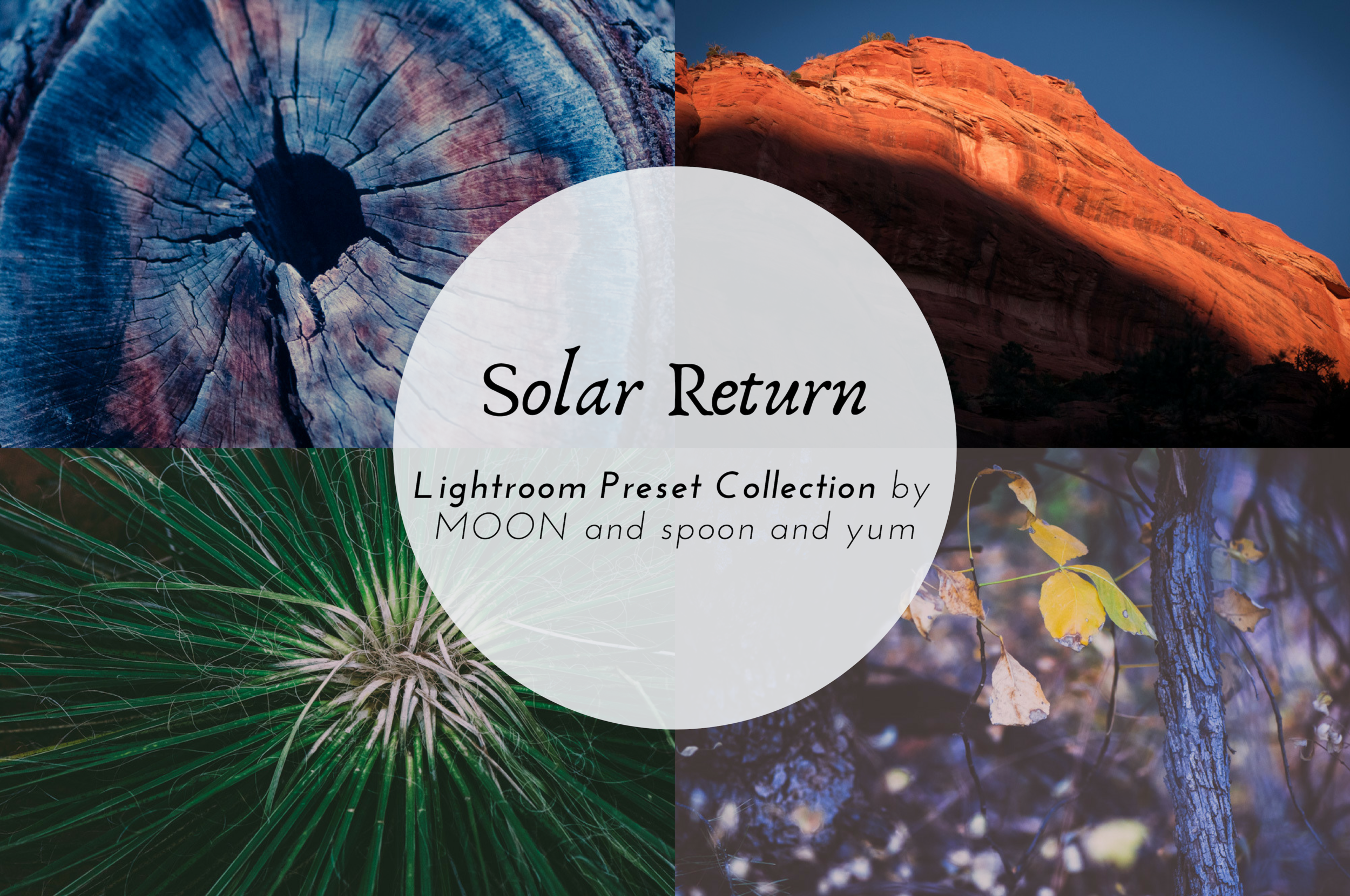 This Solar Return Lightroom Presets Collection is inspired by my favorite 35 mm films and digital VSCO film filters. They work beautifully for nature, landscape, travel, portrait, and food photos alike. Matte, moody, faded, vintage, rich, dark, colorful are some of the words I would use to describe this versatile presets collection inspired by film. Enjoy! #lightroompresets #filmpresets #vscopresets #mattepresets #moodypresets #vscofilmfilters