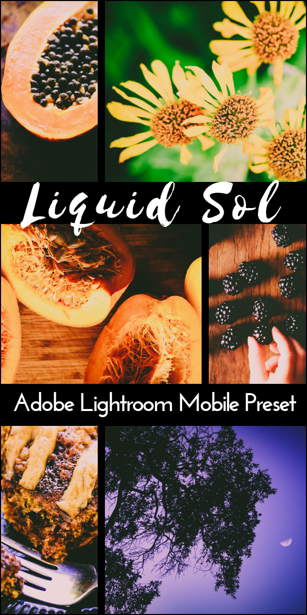 This Liquid Sol Adobe Lightroom Mobile Preset is for use with the free app 'Lightroom CC'. This beautiful and moody preset has a bright, warm, earthy glow that is perfect for nature, portrait, wedding and food photos alike.This preset was inspired by some of my favorite VSCO film filters and makes an excellent way to add a fresh feel to your Instagram feed! #lightroommobile #mobilepreset #instagramfilter #lightroommobilepreset #mobilelightroompreset #moodypreset #earthypreset #glowypreset #lightroompreset #lightroomapppreset