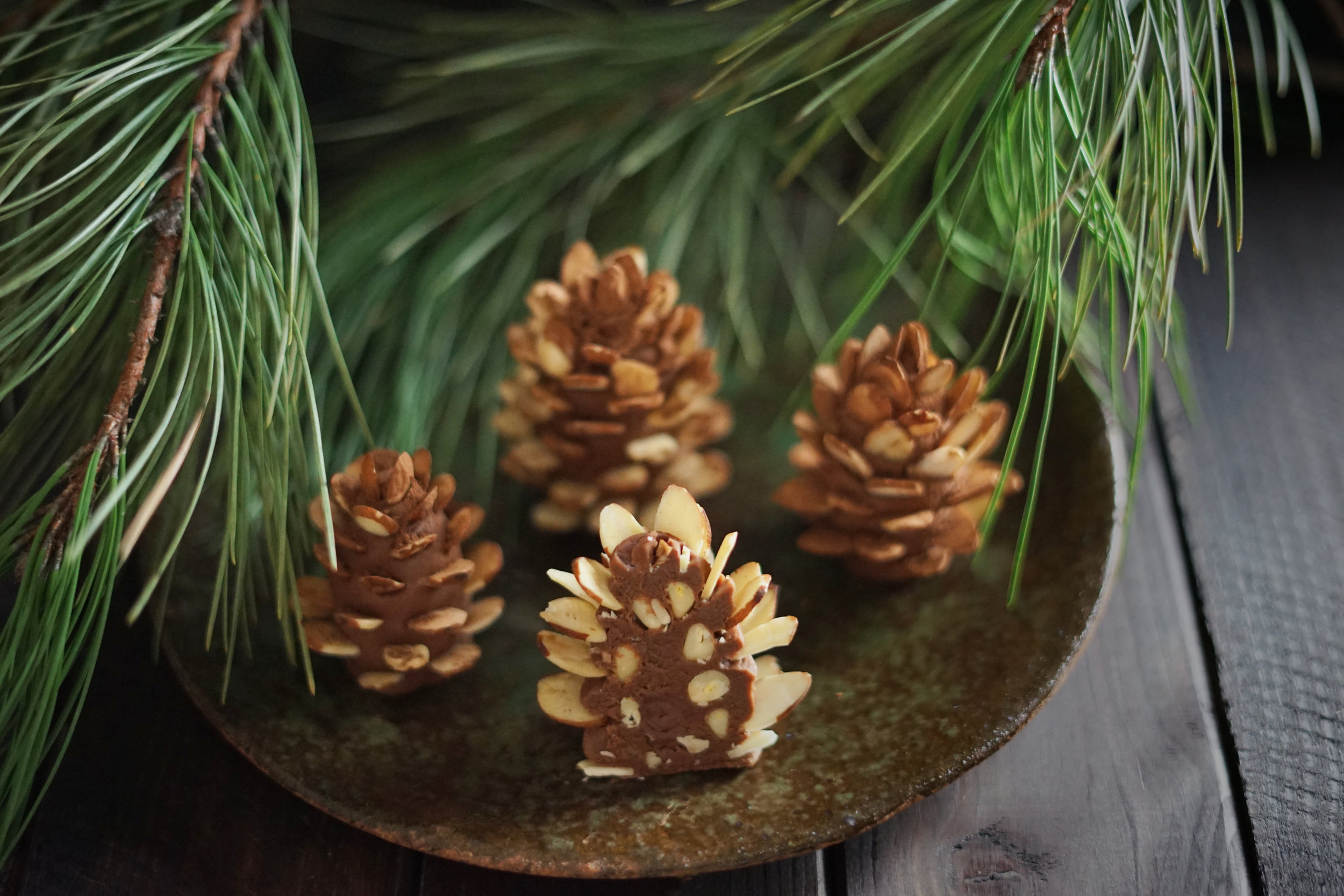 PINE CONE CONFECTIONS AND HIDDEN WONDERS