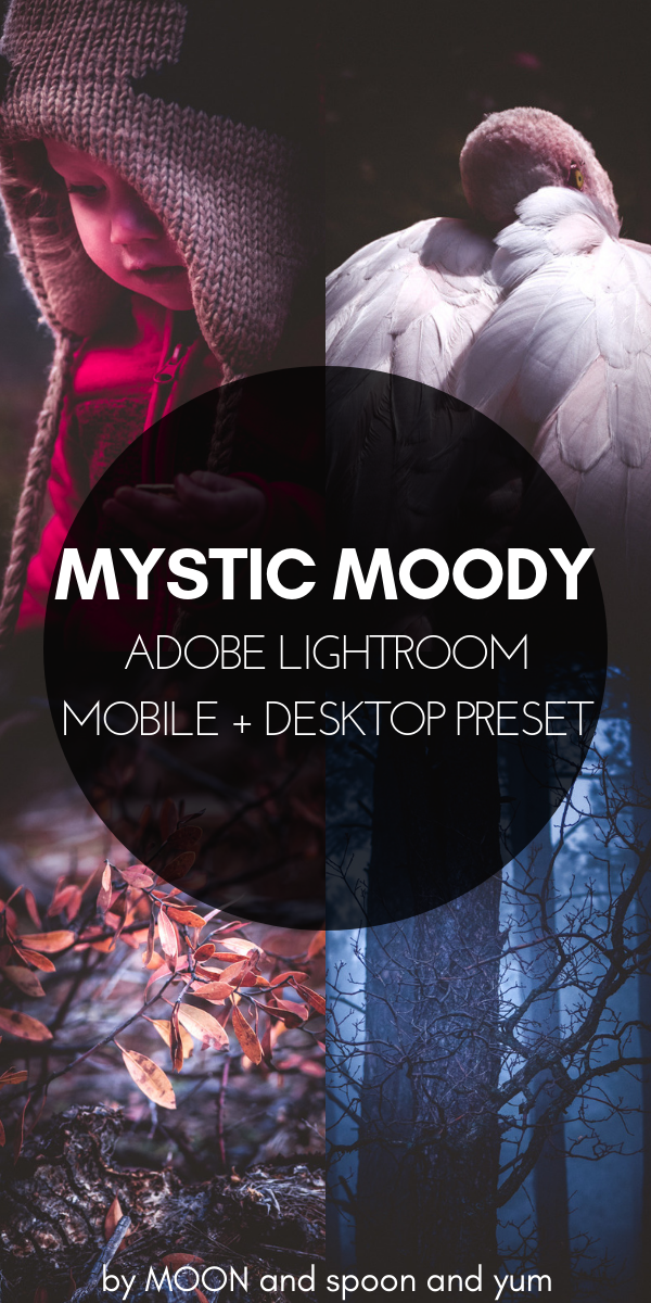 Mystic Moody Adobe Lightroom Preset for Mobile + Desktop — MOON and