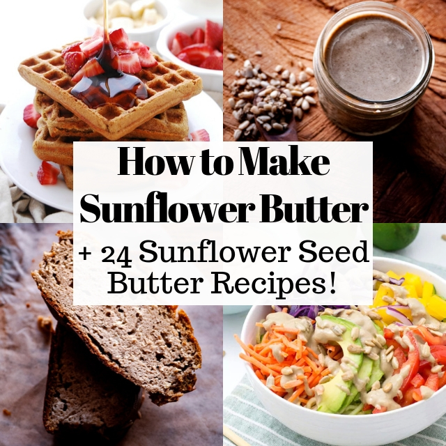 How to Make Sunflower Seed Butter + 24 Sunflower Seed Butter Recipes: Learn how to make delicious and healthy sunflower seed butter a.k.a. sunbutter, learn more about sunflower seed butter nutrition, and find 16 easy and nutritious recipes to use sunflower seed butter in. From cookies, to bread, to lunch, dinner, and granola bars - this sunflower seed butter recipe round-up has it all! #sunbutter #sunbutterrecipes #howtomakesunbutter #sunflowerseedbutter #howtomakesunflowerseedbutter
