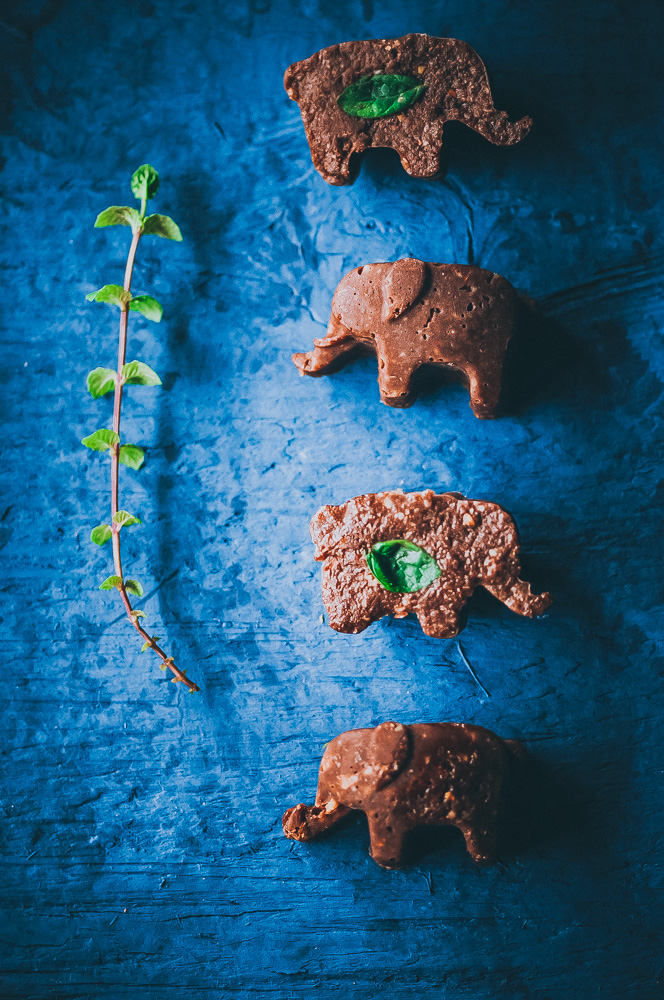 This easy and HEALTHY Mint Chocolate Freezer Candy with Adaptogens is raw, vegan, gluten-free and sugar-free! #adaptogens #adaptogenic #healthycandy #freezercandy #rasakoffee #cacao #peppermintrecipes #sugarfreecandy #mintchocolate