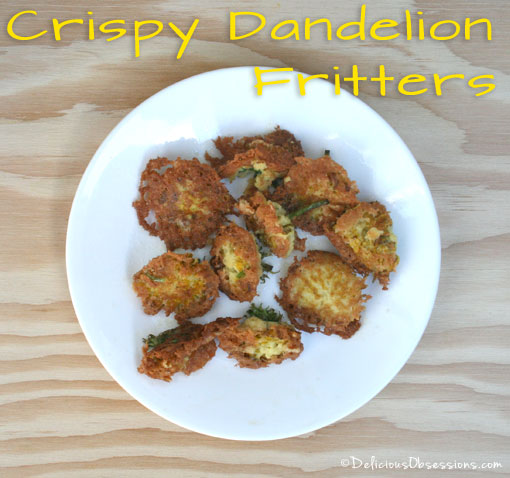 Dandelion Flower Fritters by Delicious Obsessions -