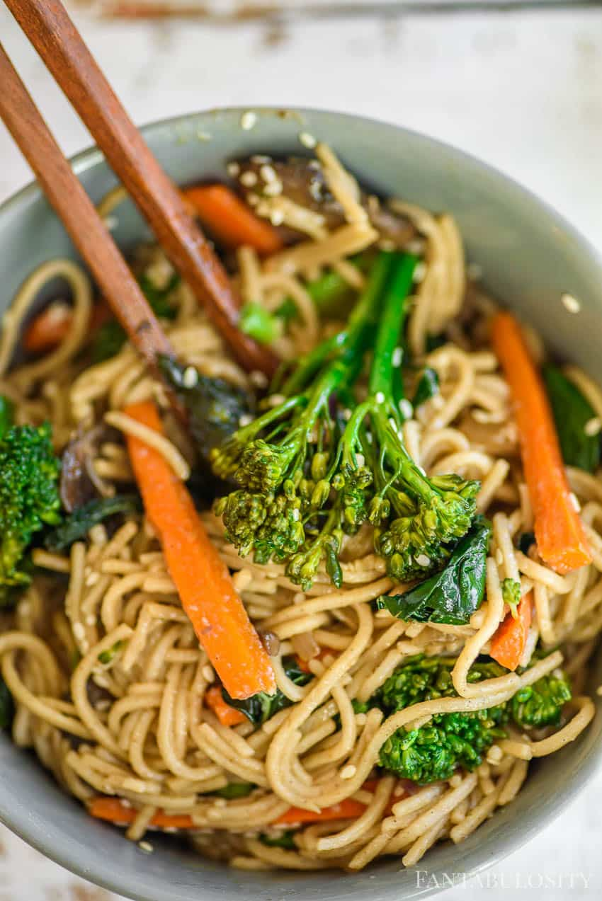 Noodle Bowl With Veggies by Fantabulosity -