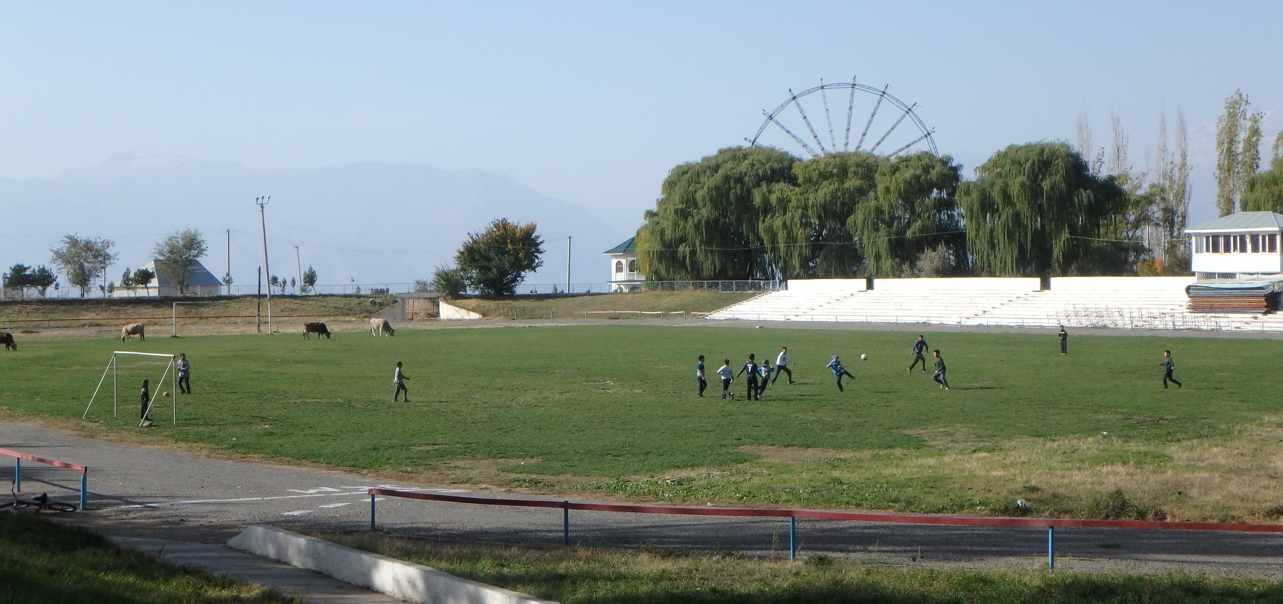 Sharing the playing field, Toktugul.