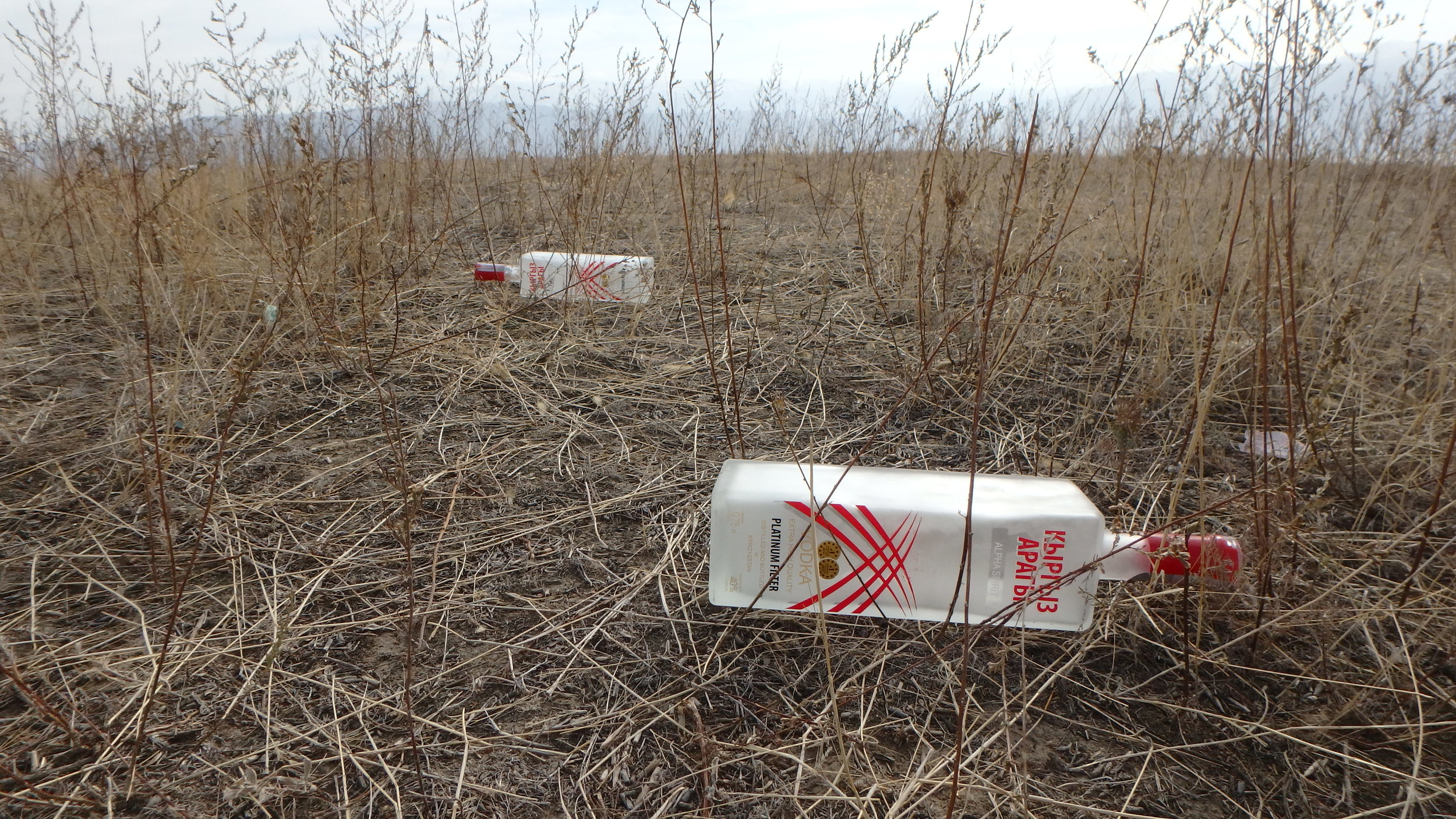 Remains of a Kyrgyz bush party - maybe left behind by the dudes in the previous photo.