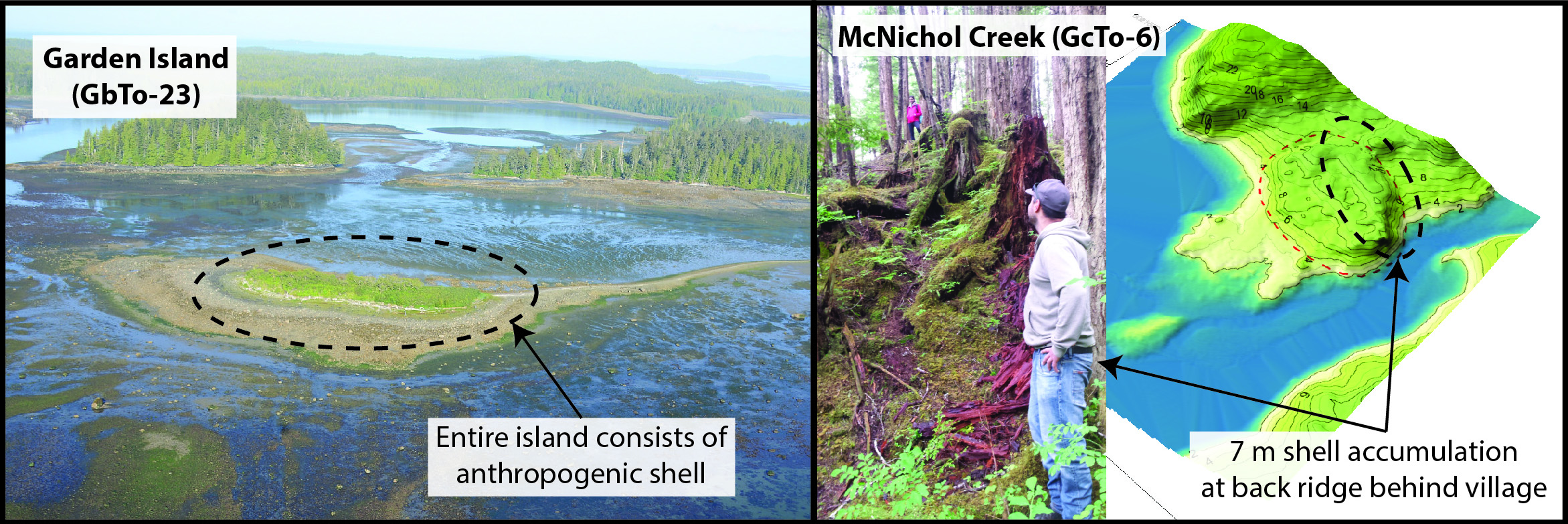 Examples of shell deposition that significantly transform landforms at Prince Rupert Harbour villages: Garden Island is an island almost entirely constructed of anthropogenic shell. Photo courtesy of Coastal and Ocean Resources and the Prince Rupert Port Authority (http://www.rupertport.com/port-authority/sustainability/shoreline-habitat). At the McNichol Creek village site (GcTo-6), a ridge of shell rises 7 m up from the natural landform behind the village. In the inset photo, the person in the red jacket stands on the crest of the ridge while the person in the foreground is standing at the base of the ridge behind the site on the natural ground surface. Photo by B. Letham.