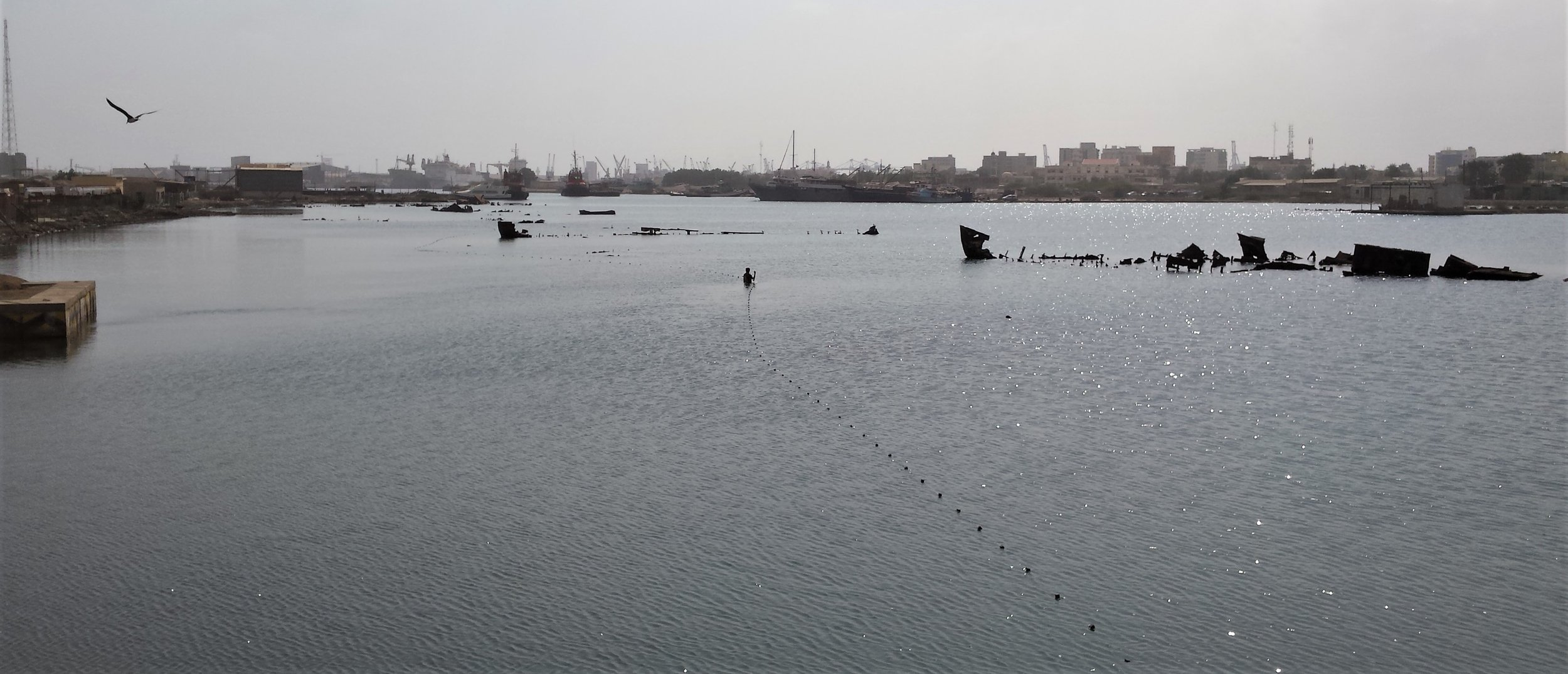A man sets a net among some ship wrecks, Port Sudan.