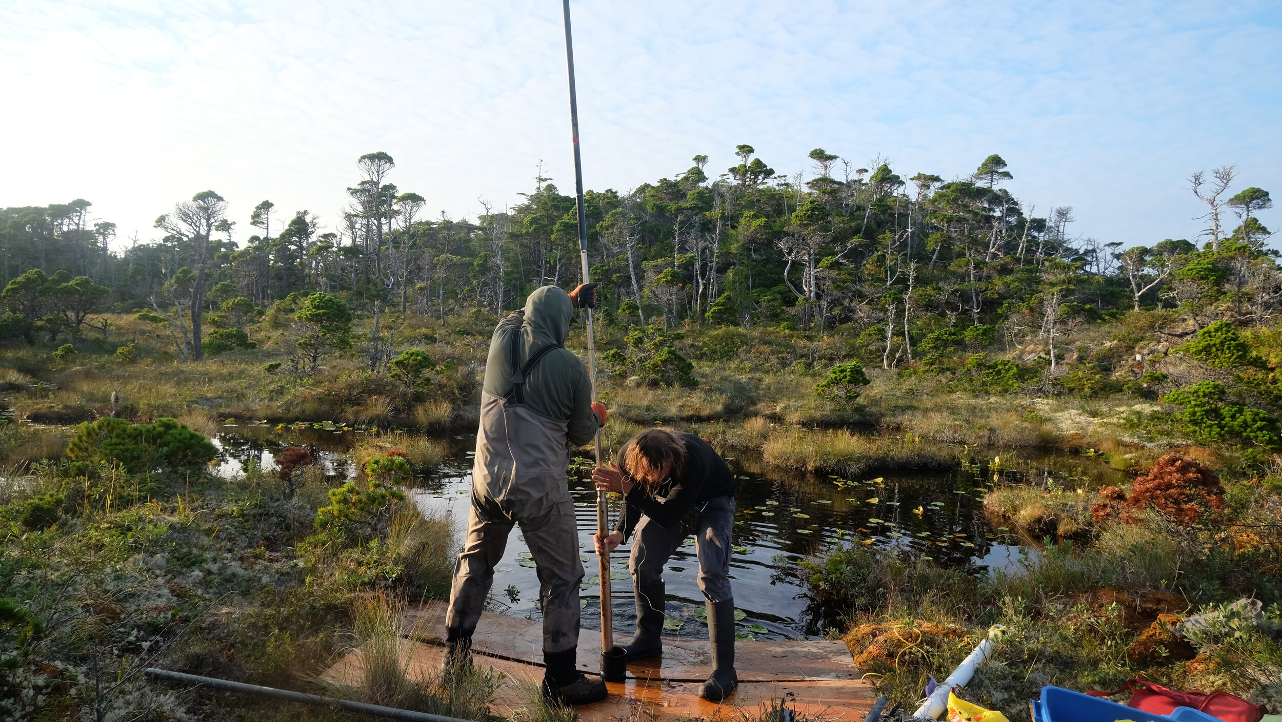 Spencer and I pull up a very long core from deep within the bog. Photo by J.K. Earnshaw.