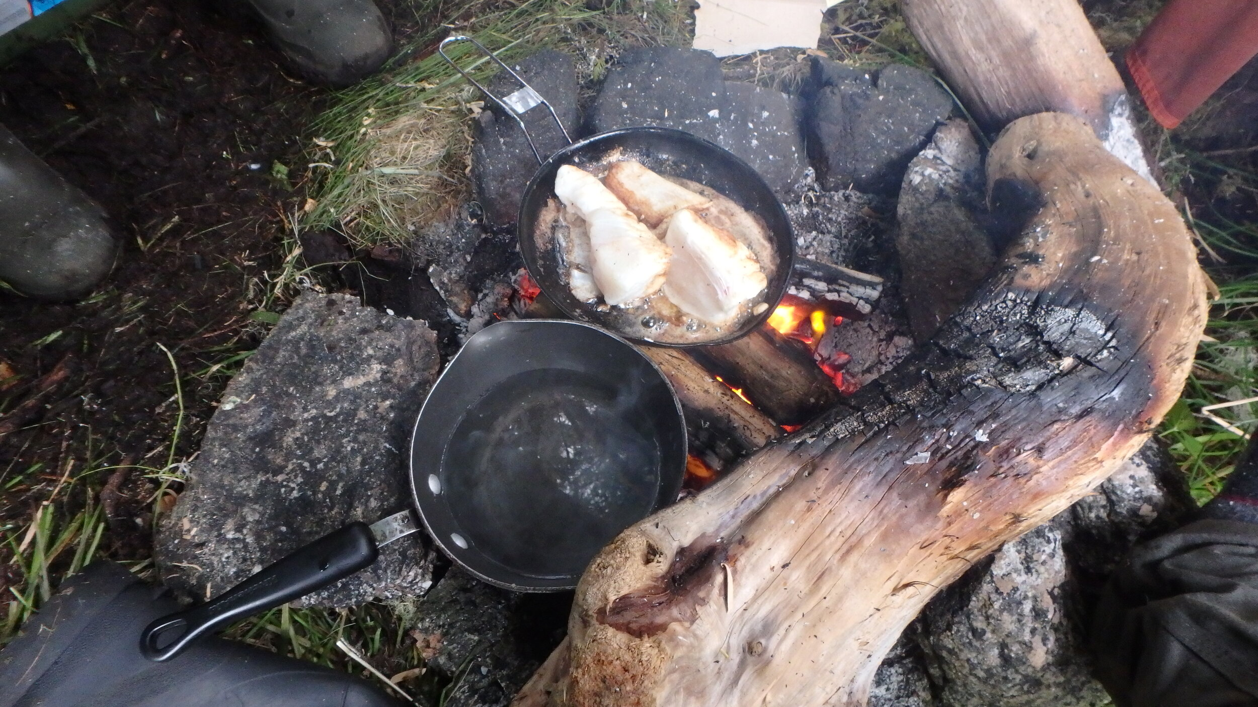 Fresh halibut fried in butter over the fire - eh!