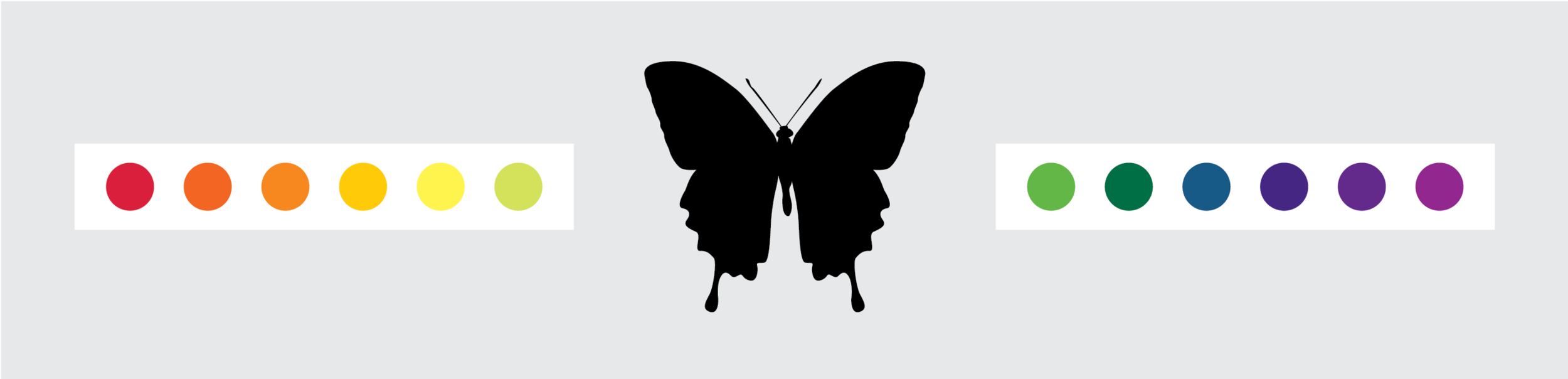 butterfly-03-1.png