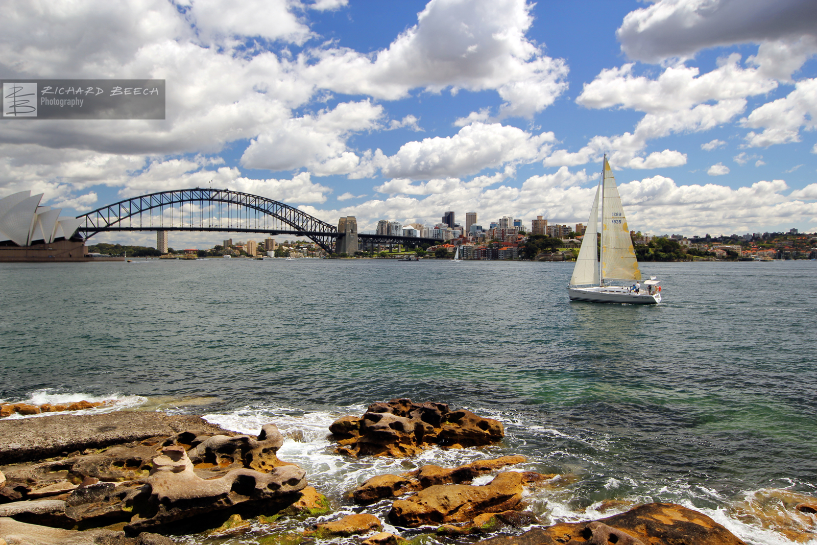 sailinginsydneyharbour1600.jpg