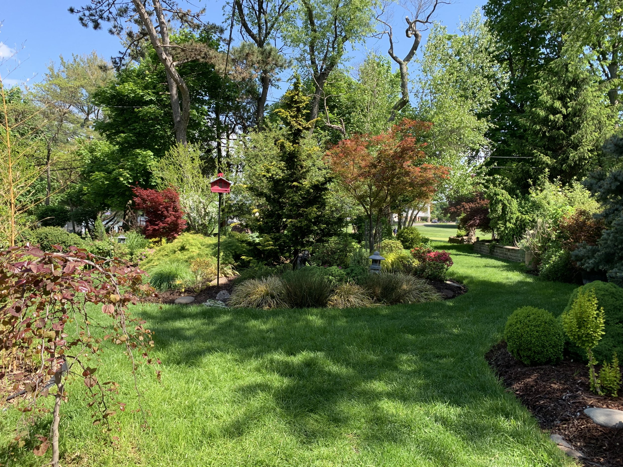 Private Glen Ridge, New Jersey Garden on the Van Vleck Roses to Rock Gardens Tour