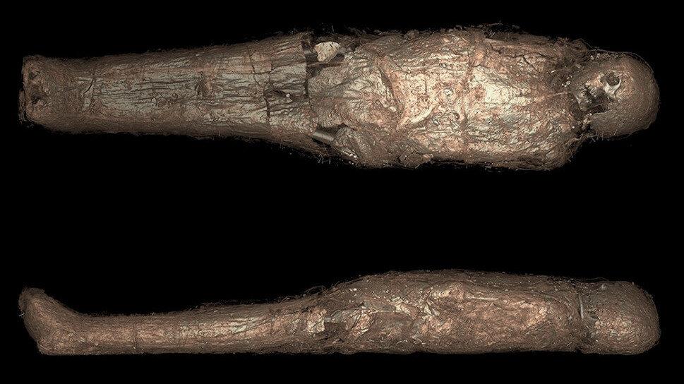 Versión en 3D de las tomografías computarizadas de la momia.  Imagen: K. Sowada et al., 2021/PLOS One