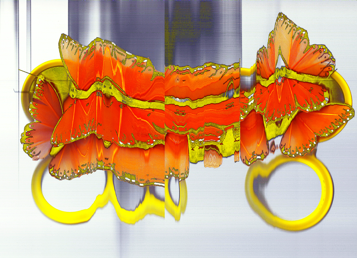 Fripillary mv